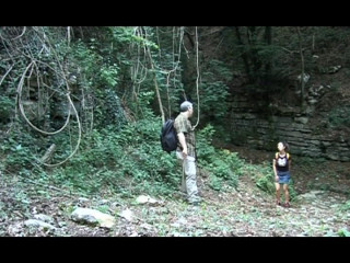 Passionate forest fuck