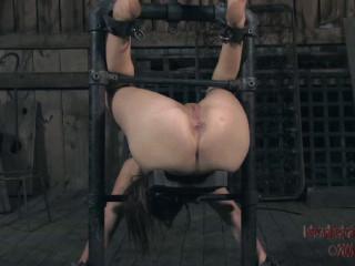 Restrain bondage Pig (PART TWO)