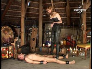 Furchte deine Mistress