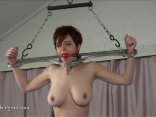 RyAnne meets the rotating Pussy Pole