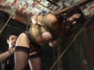 Insex - Mr. Pogo's Anal Escapade