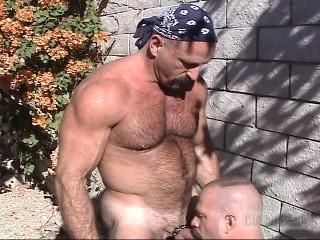 Butch Bear - Tool Chest