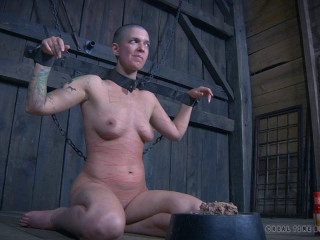 The Extended Feed of Miss Dupree - Part 4