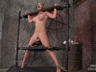 Sybian saddle Lockdown (2013)