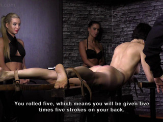 Domina Competition HD