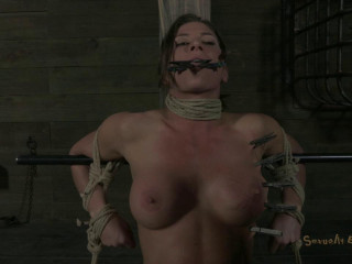Muscle-Punishment - Ariel X and Matt Williams - HD 720p