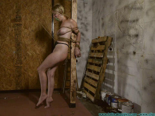 Allegra HogCuffed, Pubes Chained, then Pubes Roped Cock-squeezing
