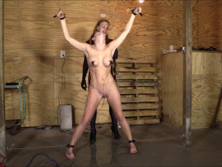 Brendas Bondage -  The Interrogation Of A Spy The Taking