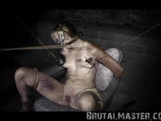 Pig - Harley Quinn Halloween Torture