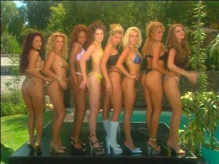 Hot Body Competition: Hotties of the Year