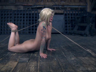 Abigail Dupree -The Extended Feed of Miss Dupree Part 1