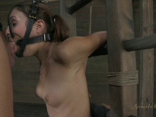 Ass Pummeled To Ejaculation