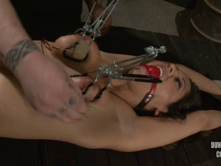 A Superb Day Of Bdsm Reena Sky