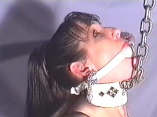 Devonshire Restrain bondage vignettes