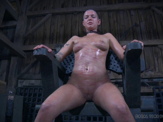 The Extended Feed of Miss Dupree - Part 5