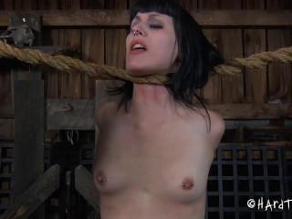Katharine Flog - Stretching Gams