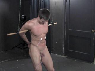 Darin - Tortured Beauty Part 1-5