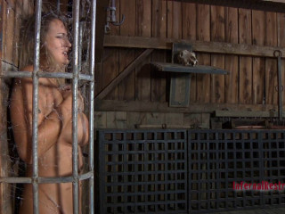 Caged Pig Trina Michaels Pd