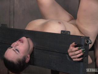 Bella Rossi bound in stocks