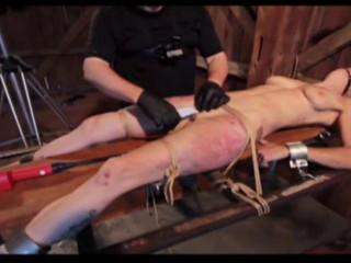 Pig - Stapled Cunthole