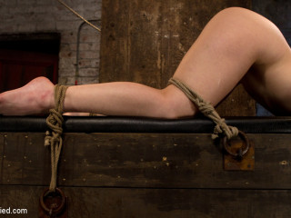 Gal next door strapped ass up. Dped - Skull humped & caned, vibrated 2 numerous climaxes
