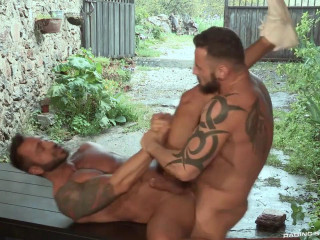 Raging Stallion - Hung Country