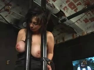 Insex - 912's December livefeed
