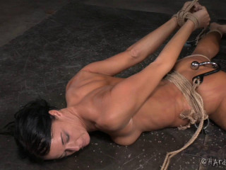 Fit To Be Trussed