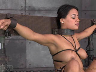 Selma Sins drilled down by two cocks