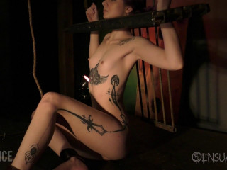 Whips and Stocks for slave jess