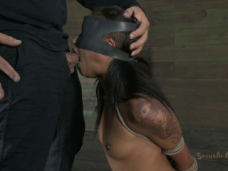 Sexually Destroyed - Skin Diamond and Matt Williams - HD 720p