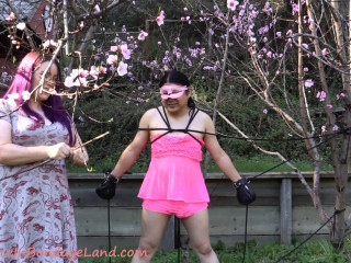 Happy Spring - Outdoor Sissy CBT Moresome - Blossom Blessing