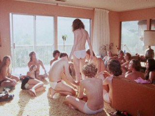 Sexual Encounter Gang (1970)