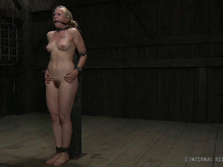 The Mark of the Cane - Tracey Sweet