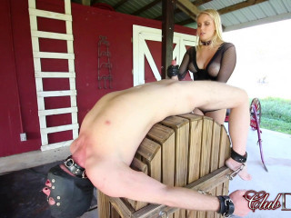 Painful milking day for slave
