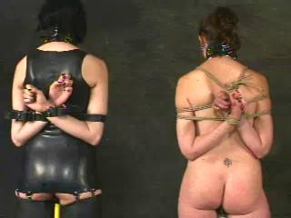 Insex - 411 Impaled (Live Feed August 3, 2001)
