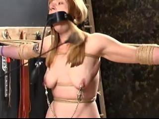 Katslut Nipple-Toe Torment