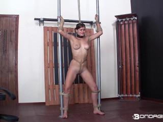 BondageLife - Cassie Barred
