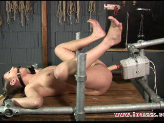 Toaxxx - (tx237) - Machine Porked in Steel Restraints - June 4, 2016