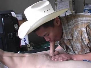 My Porn Career
