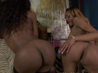 2 Steamy Black Trans Nymphs