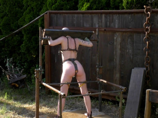 Sensualpain At The Stocks Out Back