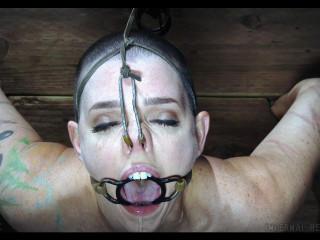 Abigail Dupree- Lobster Girl Bitch