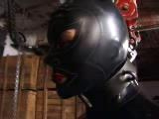Insex - Rubbermila Live Feed June 1 - Mila