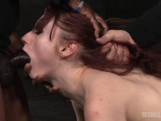 Stunning star Violet Monroe restrained doggie and dicked down into a slobbering mess!