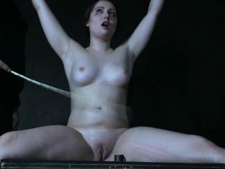 IR - Brie Haven - Misbehaving Part 2