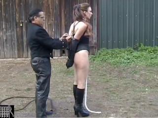 Trainee Pony Girl