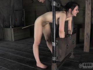 Katharine Flagellated 4 2012