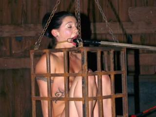 Insex - Hydrophobia, Part One (Live Feed From July 2, 2005) (922, Harsh Girl)