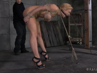 Tie My Tits Tight Please - Dee Williams